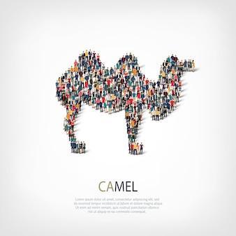Illustration d'icône de chameau