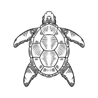Illustration de l'icône de la fine ligne méduse