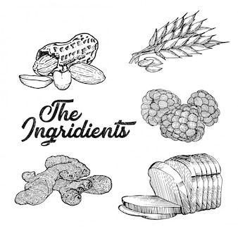L'illustration des ingrédients