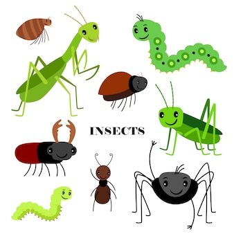 Illustration d'insectes rampants sur fond blanc