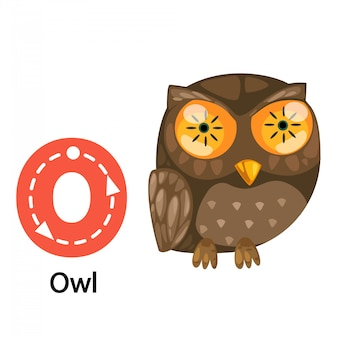 Illustration isolée lettre alphabet o-owl