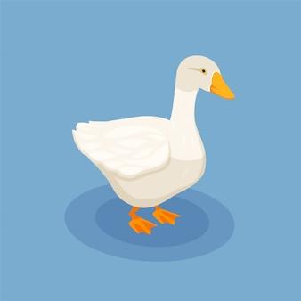 Illustration isométrique de volaille avec icône d'oie blanche sur bleu