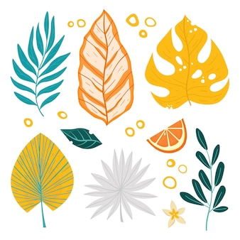 Illustration de jeu de feuilles tropicales