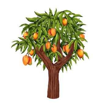 Illustration de manguier aquarelle