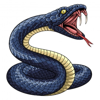 Illustration de la mascotte de serpent