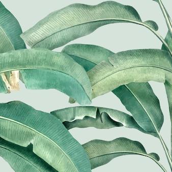 Illustration de modèle d'été tropical