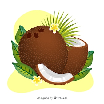 Illustration de noix de coco dessinés à la main