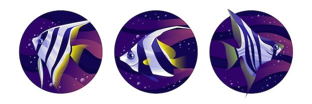 Illustration de l'oeuvre de manfish