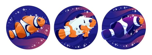 Illustration de l'oeuvre de poisson-clown