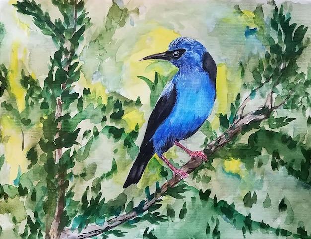 Illustration d'oiseau aquarelle dessinés à la main