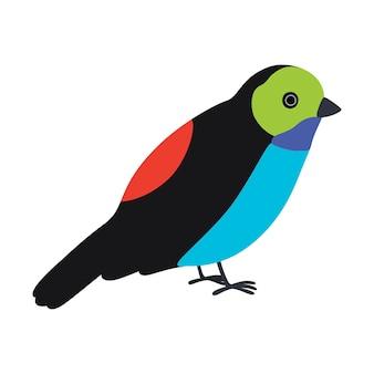 Illustration d'oiseau tangara du paradis