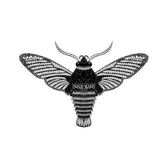 Illustration de papillon mouche incroyable