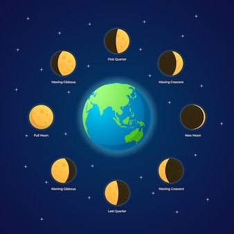 Illustration des phases de la lune