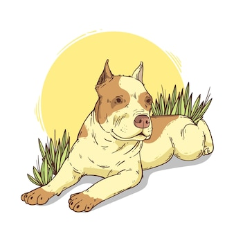 Illustration de pitbull mignon dessiné à la main