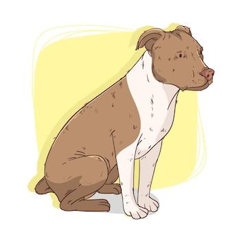 Illustration de pitbull mignon dessiné à la main