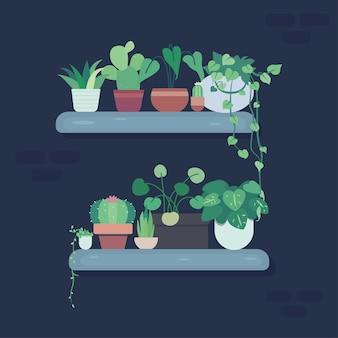 Illustration plate de plante mignonne