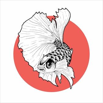 Illustration de poisson betta demi-lune dessinée à la main