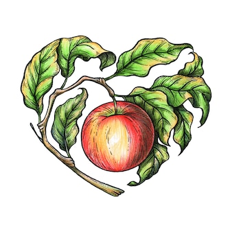 Illustration de pomme