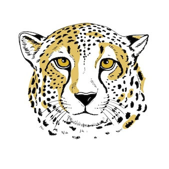 Illustration de portrait de guépard