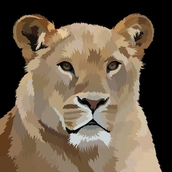 Illustration de portrait de lion