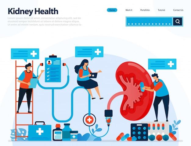 Illustration pour vérifier la santé rénale. maladies et troubles du rein.