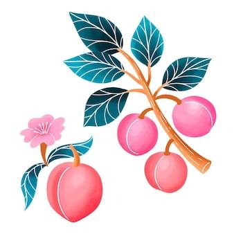Illustration de prunier peint à la main