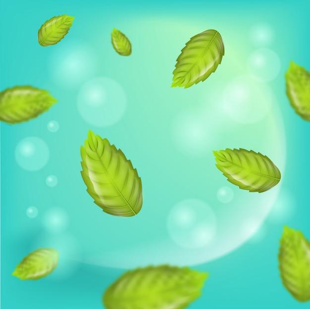Illustration réaliste vecteur de feuilles de menthe fraîche