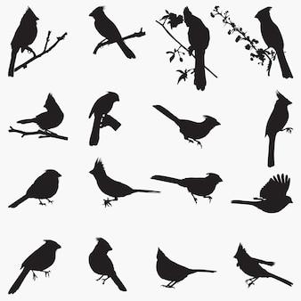 Illustration de silhouettes cardinales