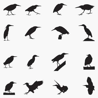 Illustration de silhouettes héron strié