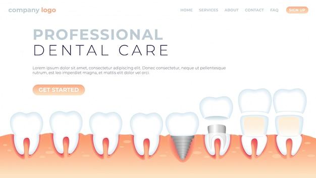Illustration soins dentaires professionnels.