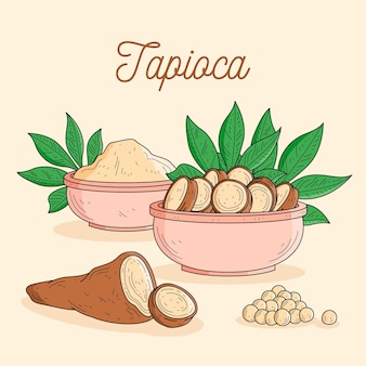 Illustration de tapioca dessiné à la main
