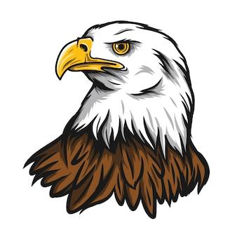 Illustration tête d'aigle