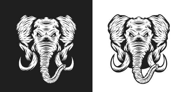 Illustration tête d'éléphant