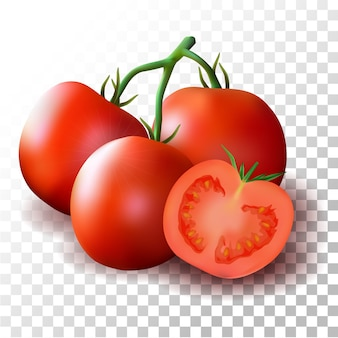 Illustration tomate réaliste