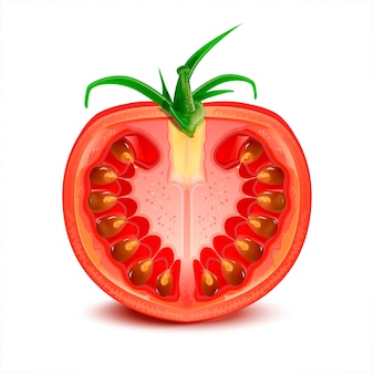 Illustration de tomate