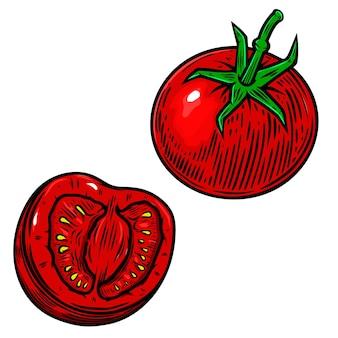 Illustration de tomates cerises isolées sur blanc. élément de design pour affiche, carte, bannière, flyer, menu. illustration vectorielle