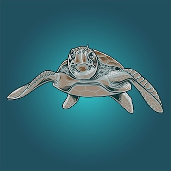 Illustration de tortues de mer