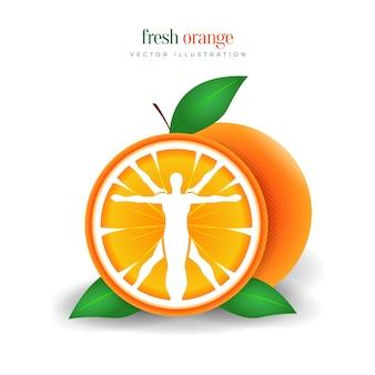 Illustration d'une tranche d'orange de fruits de nutrition saine
