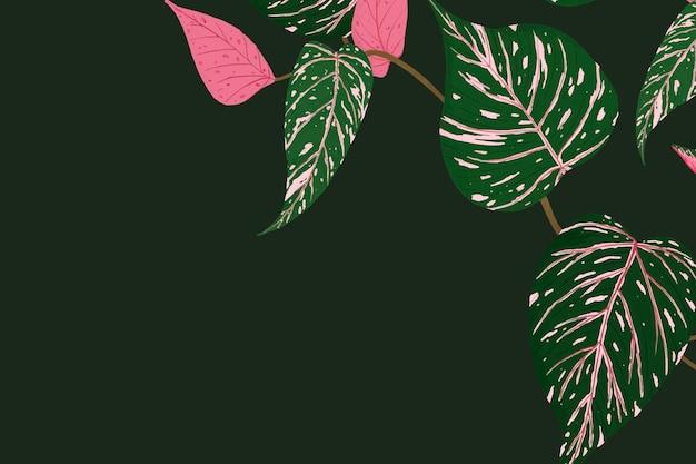 Illustration tropicale verte de vecteur de fond