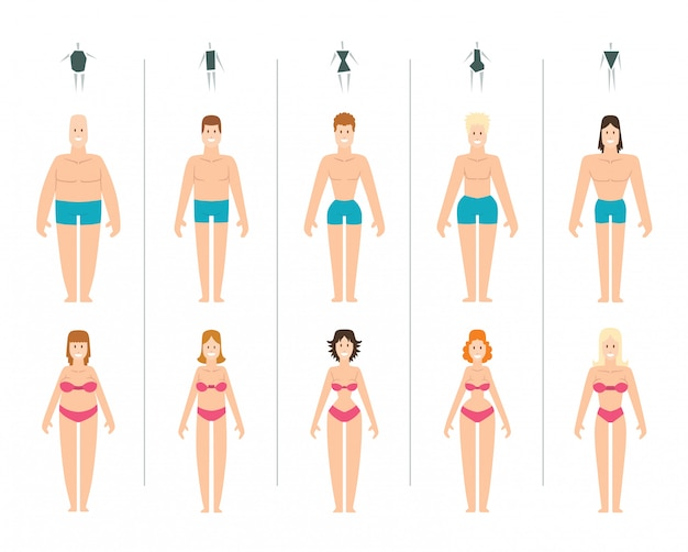 Illustration des types de corps féminins.