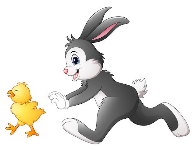 Illustration de vecteur de dessin animé drôle de lapin à la poursuite de poussin