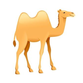 Illustration de vecteur plat de conception animale de dessin animé mignon chameau de deux bosses isolée sur fond blanc.
