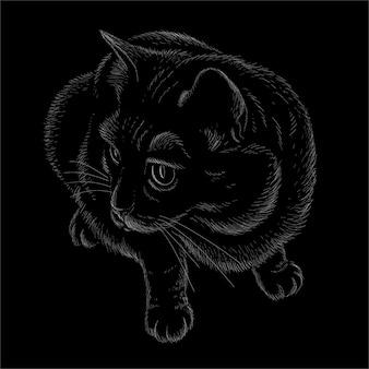 Illustration vectorielle de chat