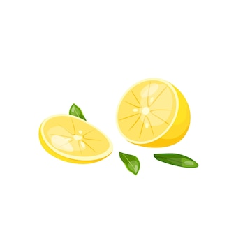 Illustration vectorielle d'un citron tranché source de vitamine c