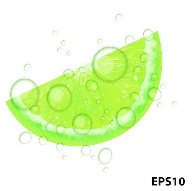 Illustration vectorielle de citron vert frais juteux fond
