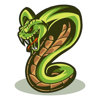 Illustration vectorielle cobra isolée