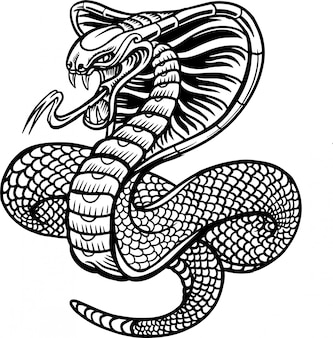 Illustration vectorielle de cobra snake