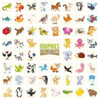 Illustration vectorielle de la collection d'animaux de dessin animé