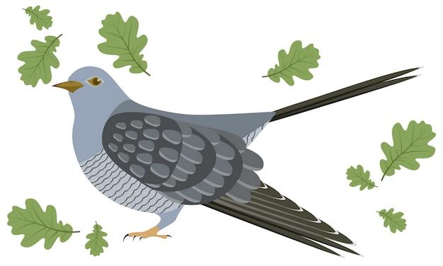 Illustration vectorielle de coucou