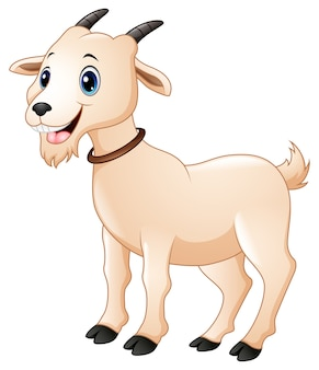 Illustration vectorielle de dessin animé mignon chèvre